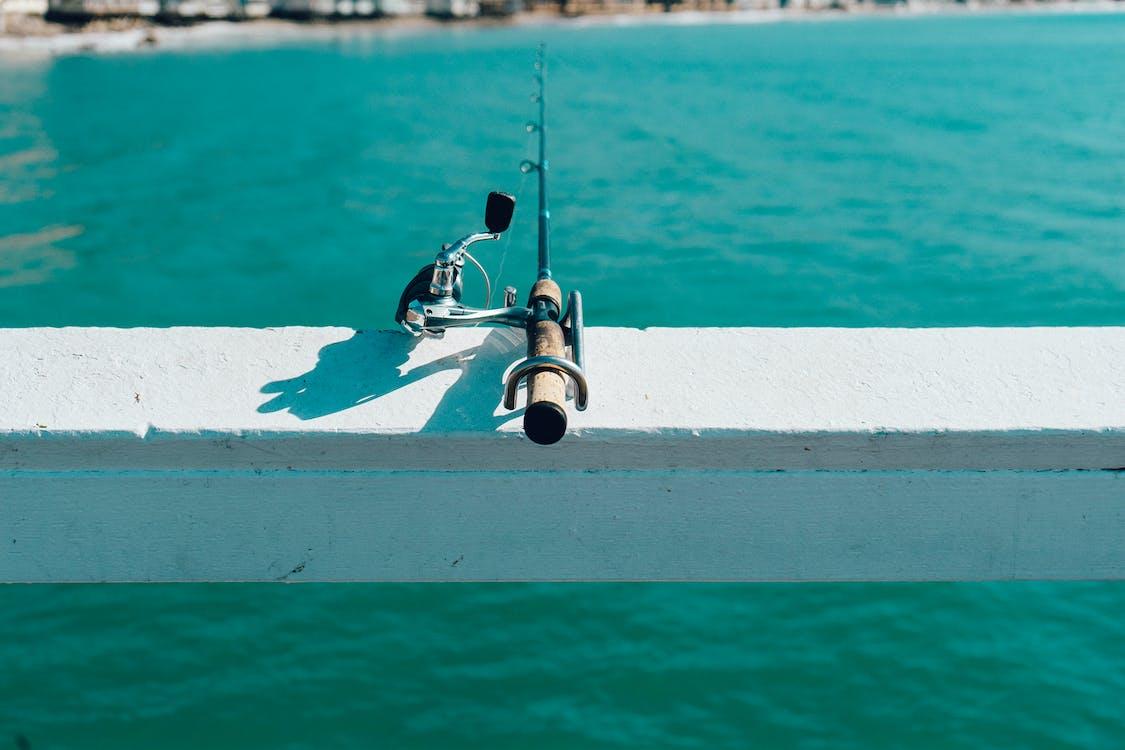 Balık tutmak, balıkçılık, olta takımı içeren Ücretsiz stok fotoğraf