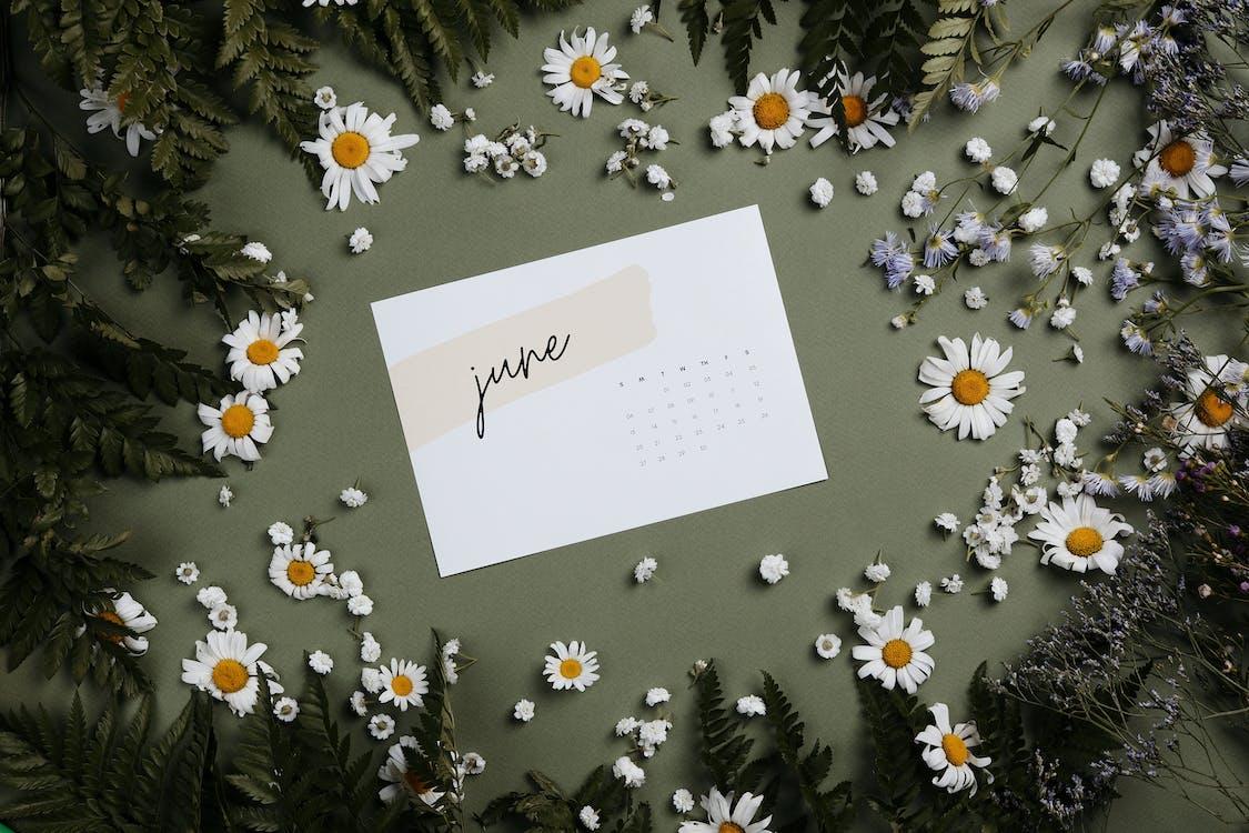 White Printer Paper on White and Black Floral Textile