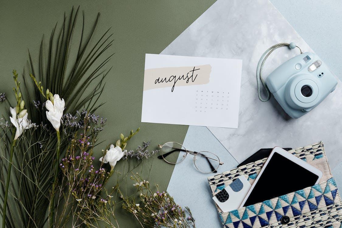 Kostenloses Stock Foto zu august, begrifflich, blatt