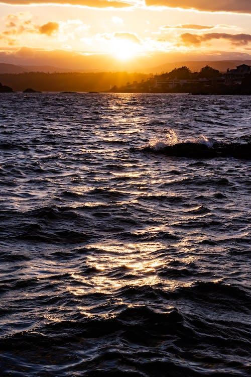 Free stock photo of beach sunset, beach waves, golden sunset