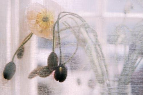 White and Yellow Flower on White Textile