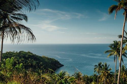 俯瞰, 假期, 夏天, 夏季 的 免费素材图片