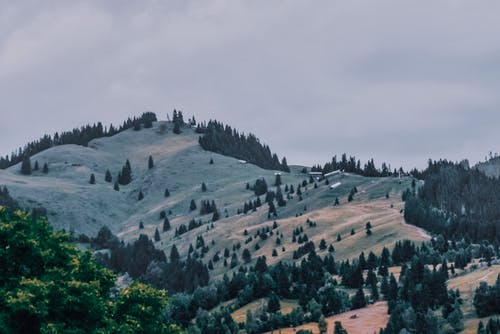 Picturesque view of green forested hills with small remote village beneath gloomy cloudy sky