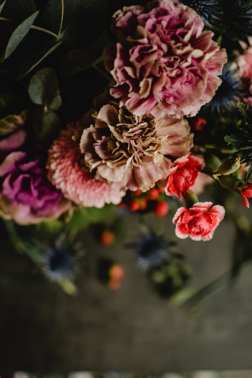From above of bouquet of vibrant multi colored flowers in dark room on blurred background