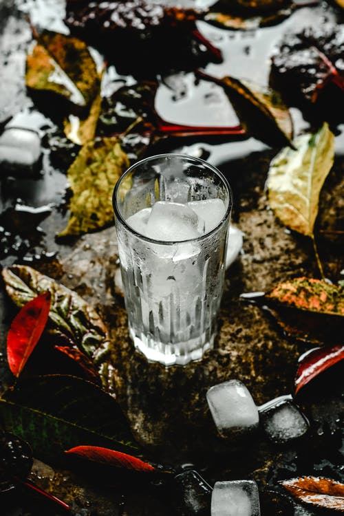 High-Angle Shot of Ice Cubes in a Glass