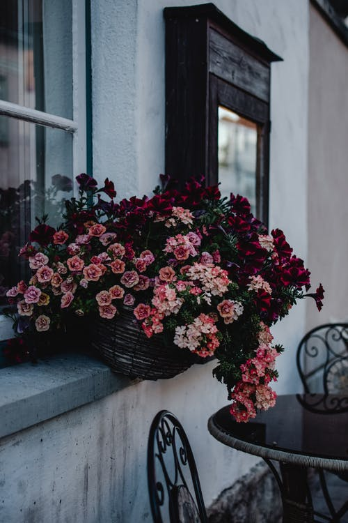 Red and Pink Flowers On A Basket