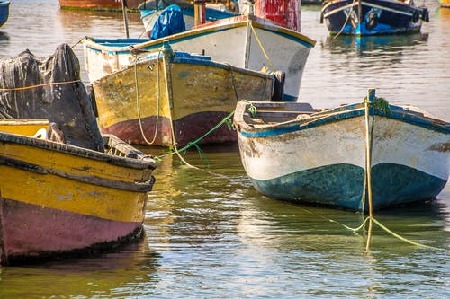 Fishing Boats on Water