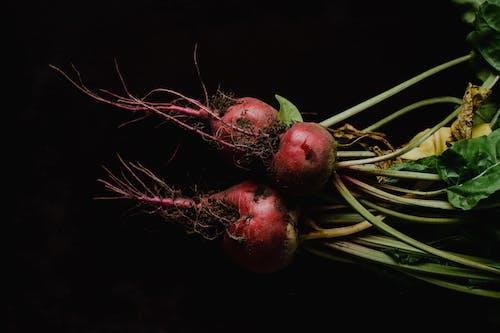 Rood Rond Fruit Op Zwarte Achtergrond