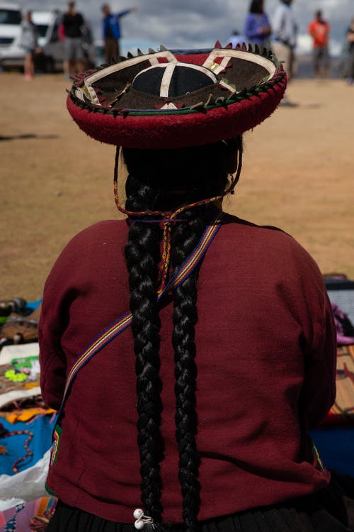 Back View of a Person with Pigtails
