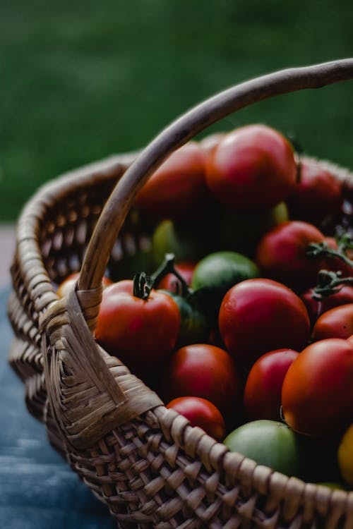 Red Tomatoes in Brown Woven Basket