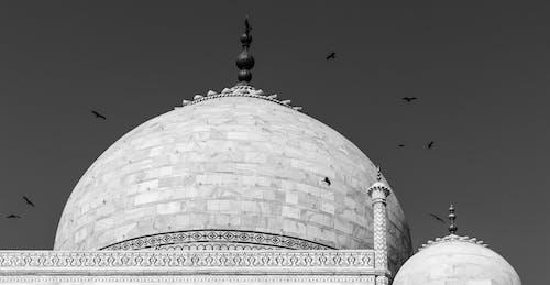 Foto stok gratis agra, Arsitektur, hitam dan putih, India