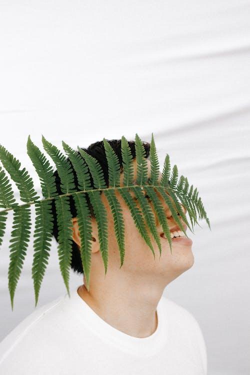 나뭇잎, 남자, 미소 짓는의 무료 스톡 사진