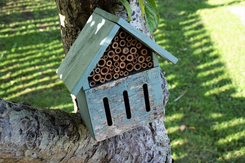 Free stock photo of bug habitat, bug hotel, garden, insect habitat
