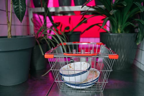 Stainless Steel Shopping Cart With White Ceramic Bowl