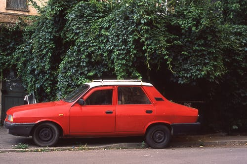 Red Sedan Parked Near Green Trees