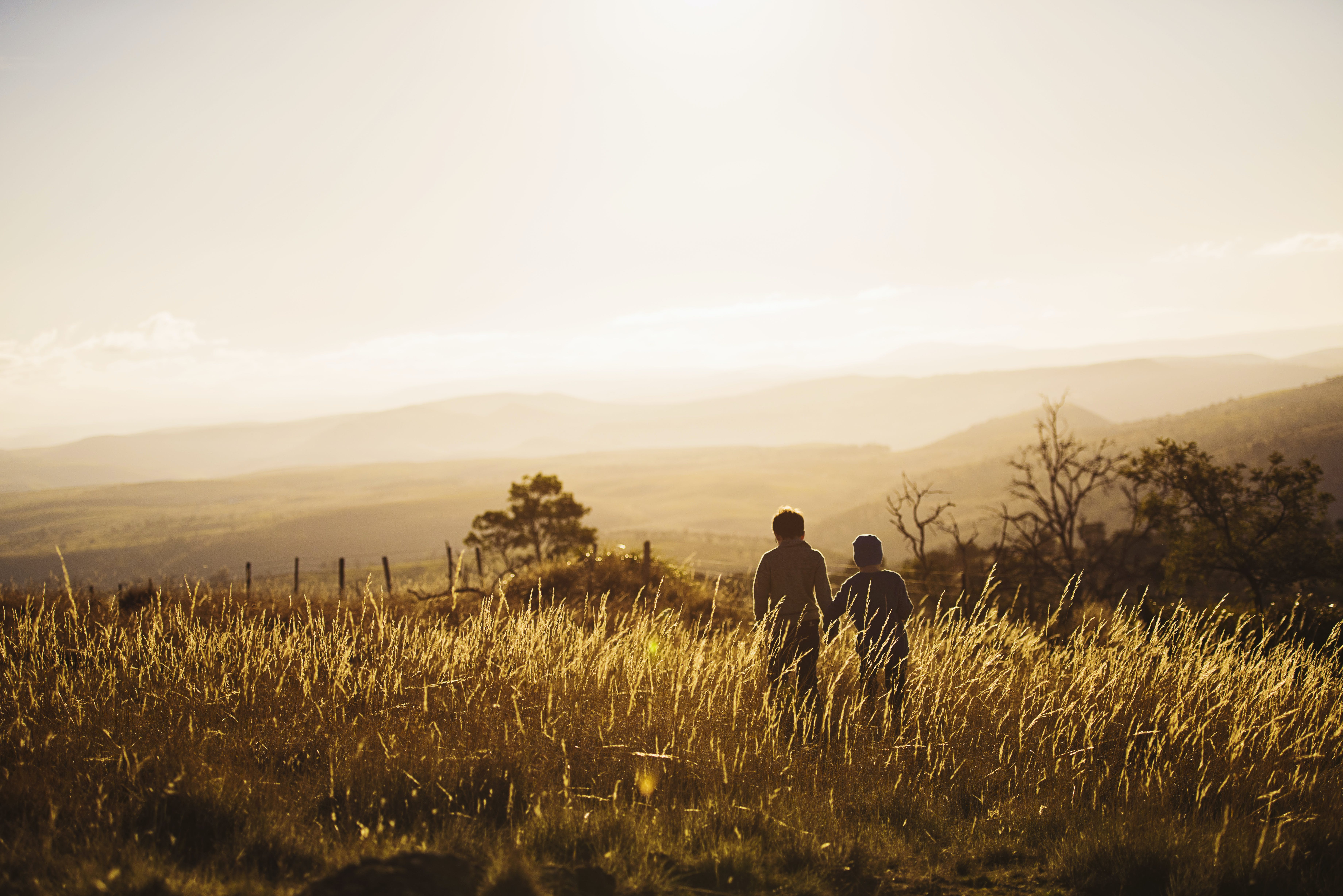 Two Persons Walking on Grassy Field