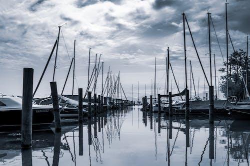Free stock photo of black-and-white, lake, masts