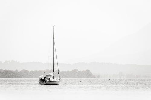 Free stock photo of black-and-white, boat, lake