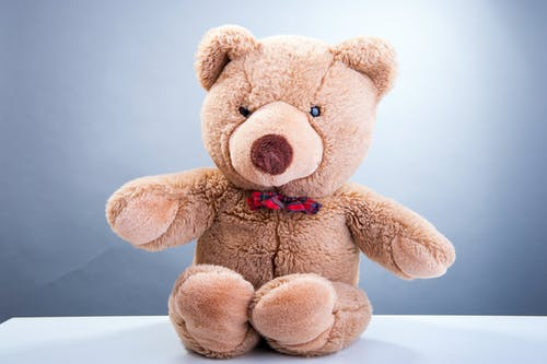 Toy bear on table on gray background