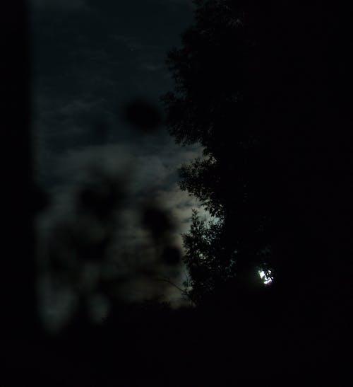 Free stock photo of cloud, moon, night