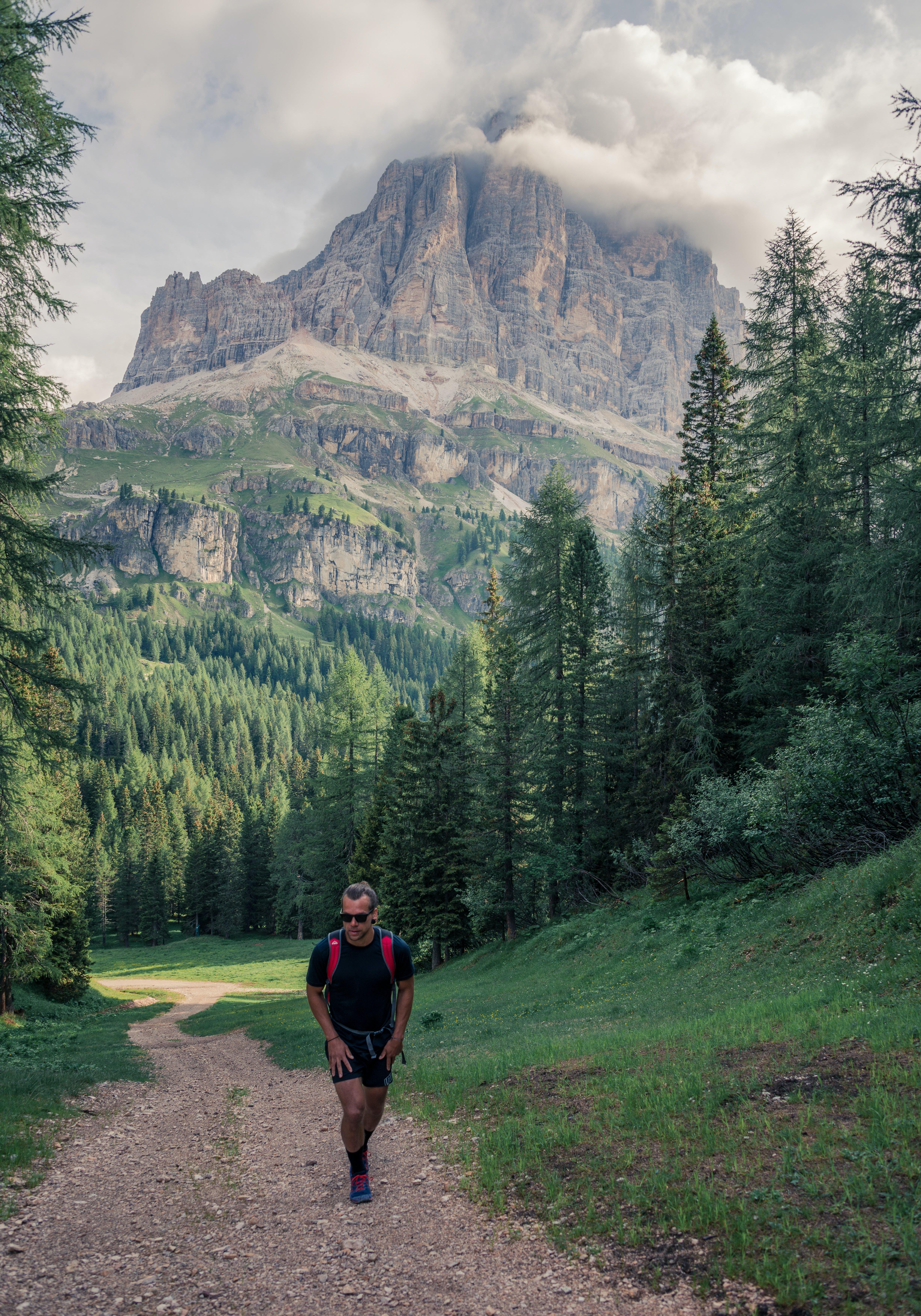 Man Walking Near Pine Trees and Mountain