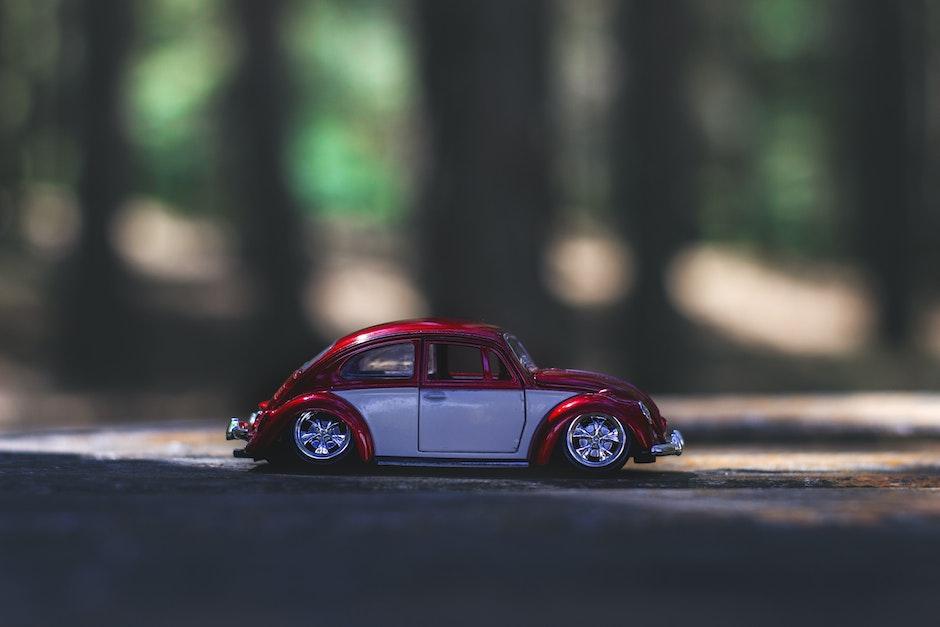 beetle, car, macro photography