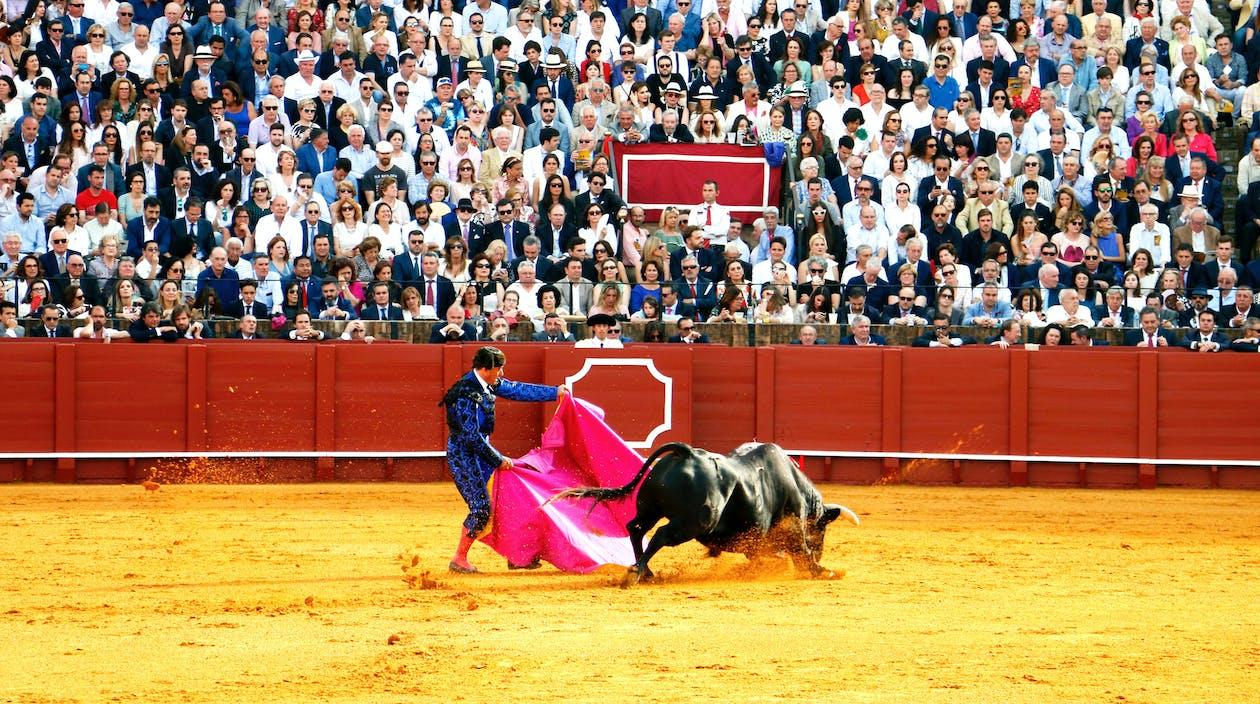 الدراسة في إسبانيا.. أهم 8 أسباب تدفعك لذلك!