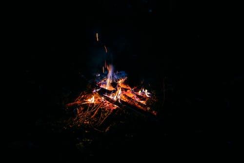 Campfire burning on grassy ground at night