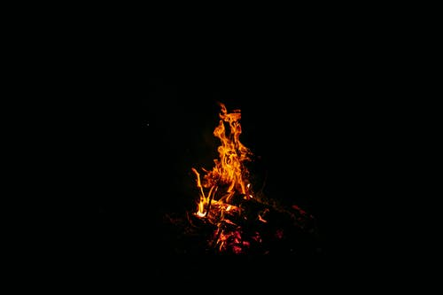 Powerful orange flames of burning bonfire on ground in dark forest at night