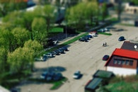 cars, trees, parking