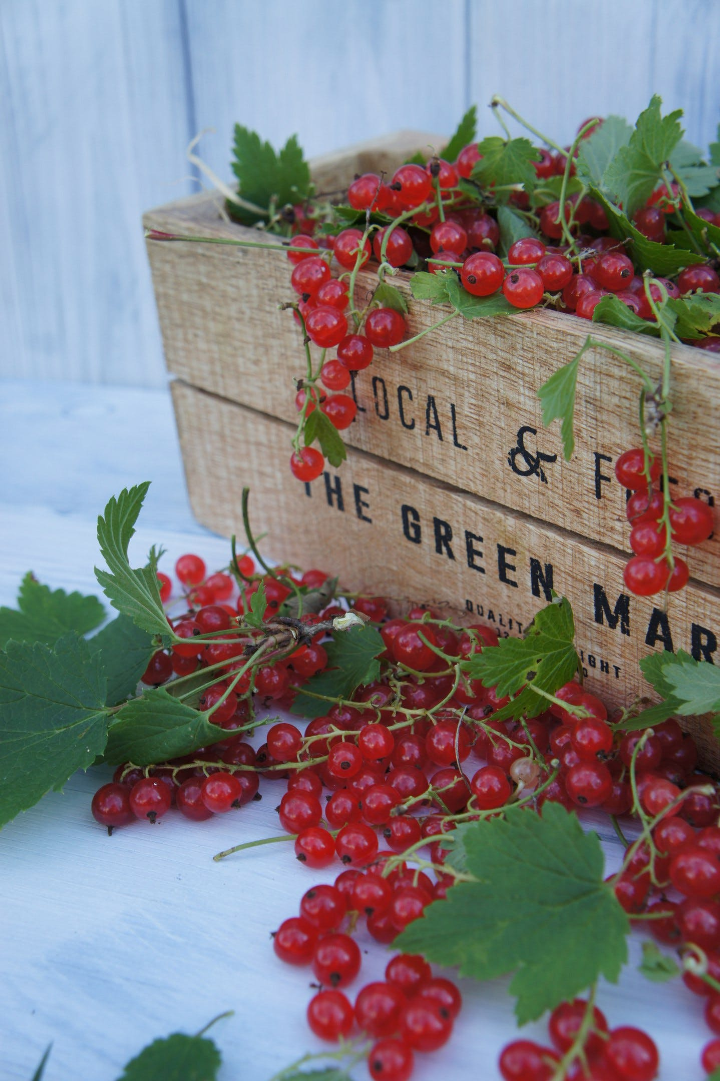 Free stock photo of berries, berry, food, foodphoto