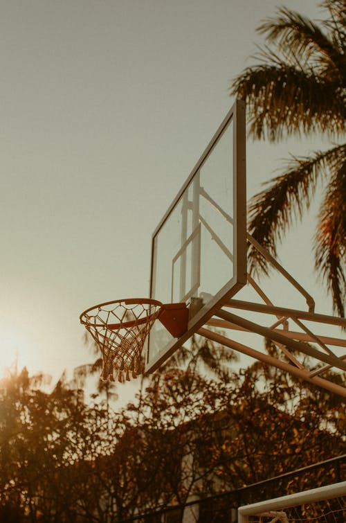 From below basketball backboard with hoop on sports ground among tropical plants in park