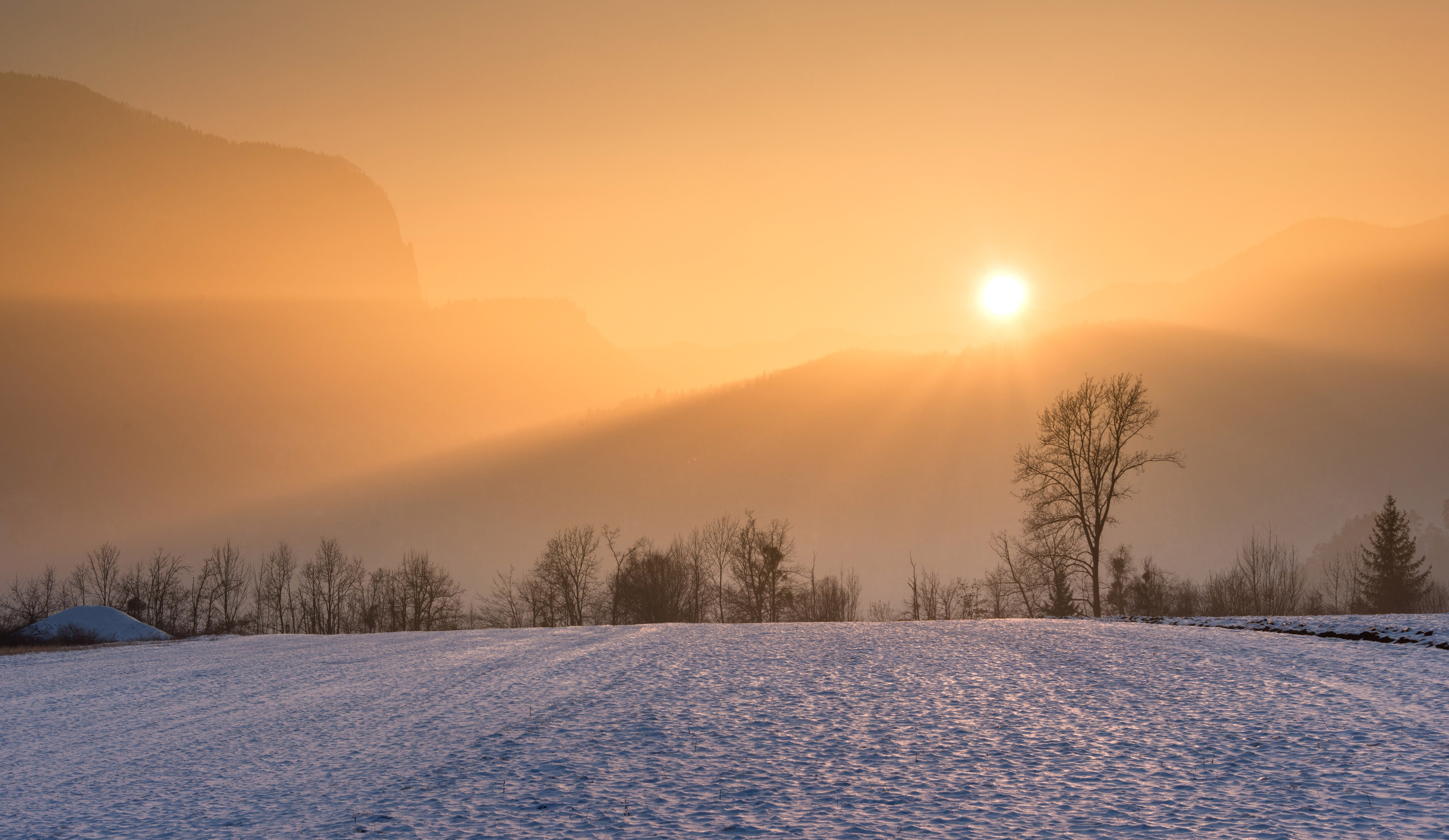 Snowfield and Golden Hour