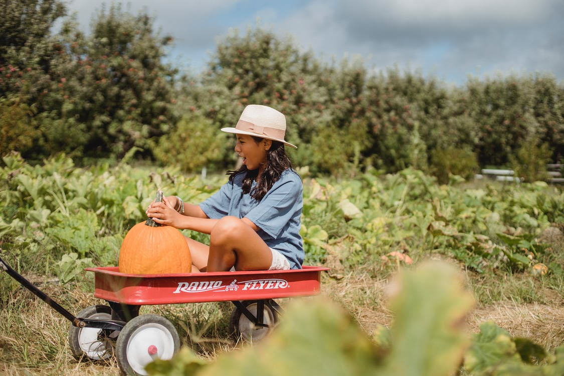 Cheerful girl in cart with pumpkin