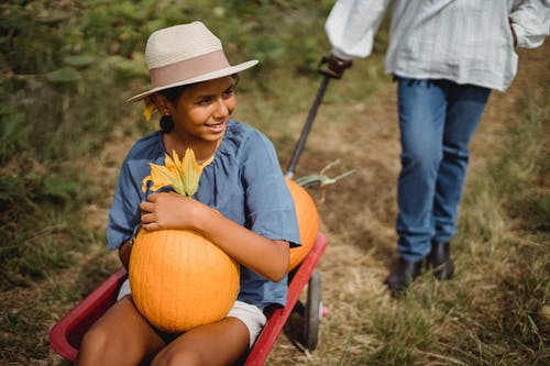 Happy Hispanic girl in cart with pumpkin