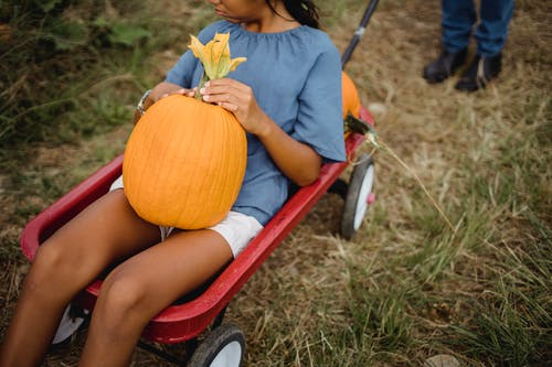 Crop young ethnic girl in cart