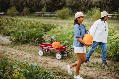 Hispanic woman with daughter in pumpkin field