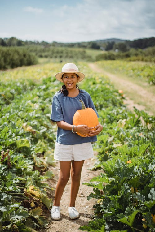 Happy young girl with pumpkin in field