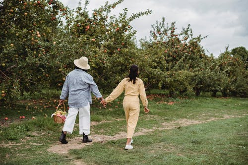 Woman and daughter walking in orchard with fruits in basket