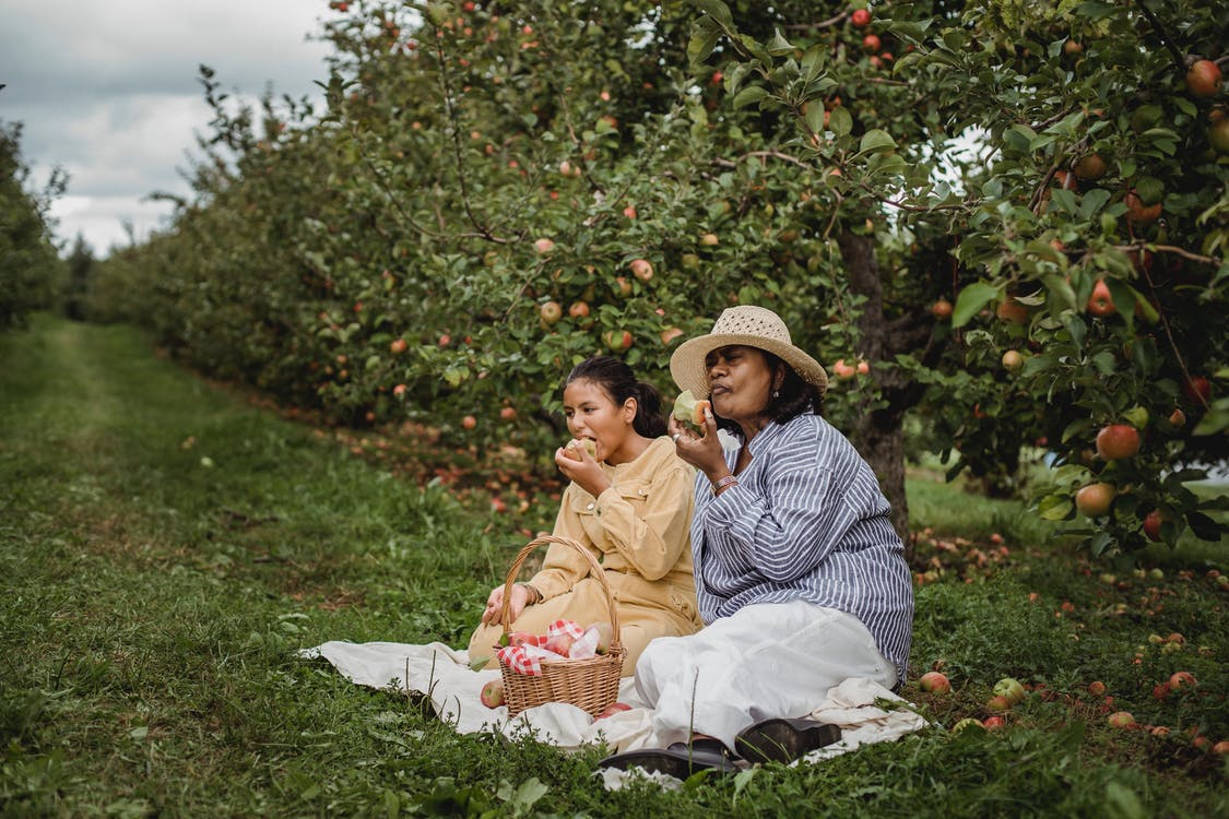 Ethnic mother and daughter eating apples during picnic