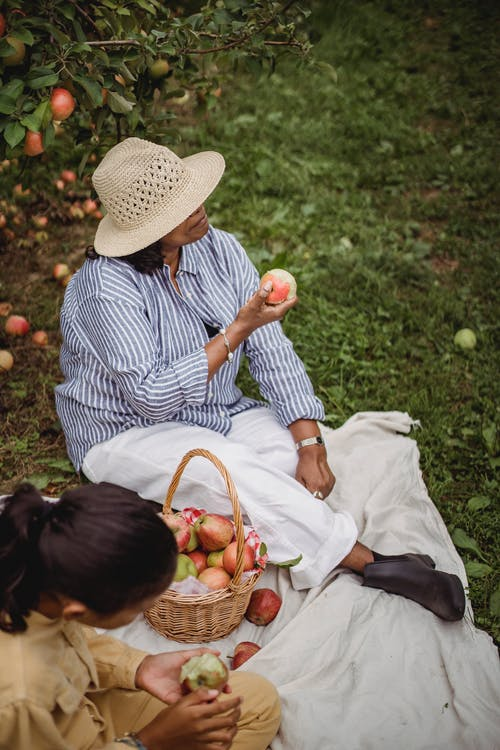 From above of anonymous ethnic mom and daughter eating apples while resting on plaid in orchard