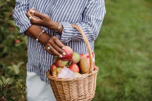Uprawa Etnicznej Kobiety Z Koszem Jabłek
