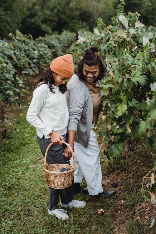 Kostenloses Stock Foto zu abholen, agronomie, asiatische frauen, bauernhof