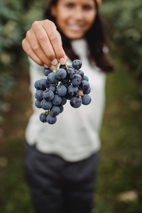 Foto profissional grátis de adolescência, adolescente, agradável, agricultor