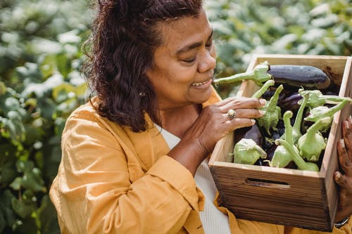 Crop happy middle aged ethnic female farmer in casual clothes standing in garden with box of fresh ripe eggplants after harvesting on sunny day