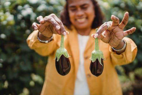 Joyful female gardener demonstrating eggplants in farm