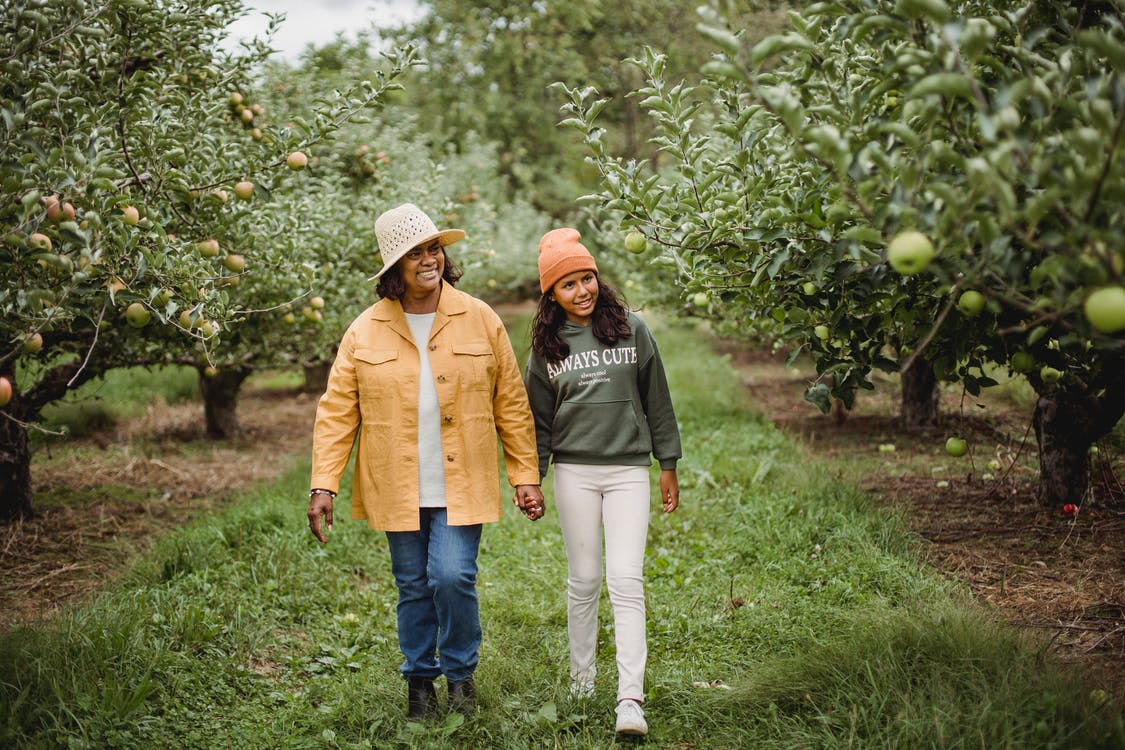Smiling ethnic farmers walking on path between apple trees