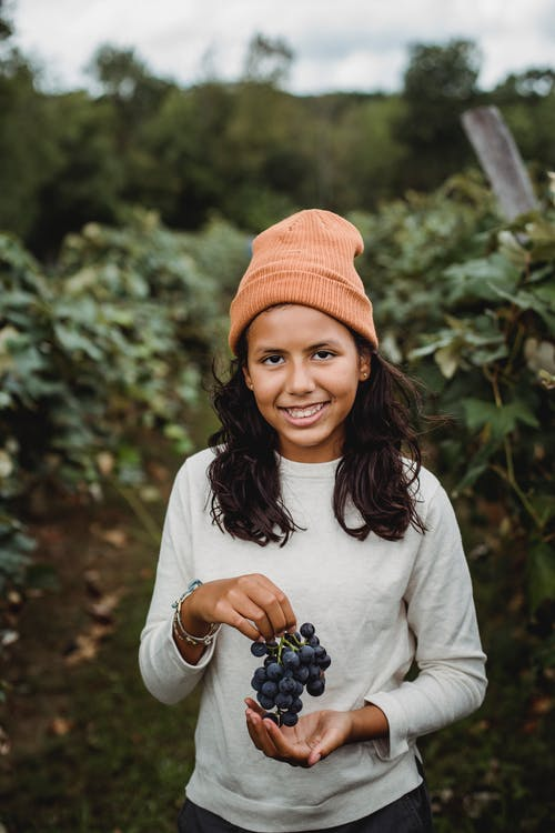 Sincere ethnic girl with bunch of fresh grapes looking at camera between vines in countryside