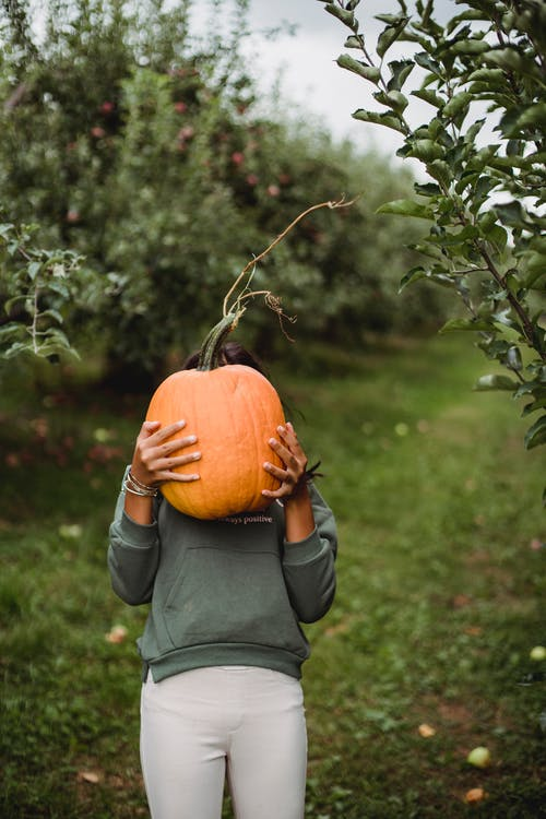 Anonymous ethnic teen with big raw pumpkin on grass path between apple trees in countryside