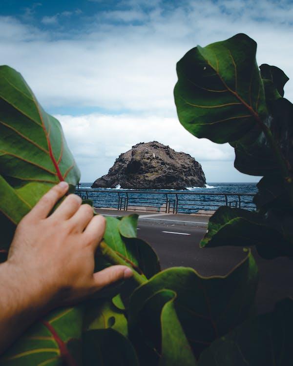 ISlas Canarias, Tenerife